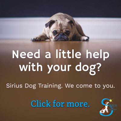 Sirius Dog Training: http://www.siriusdogtraining.net